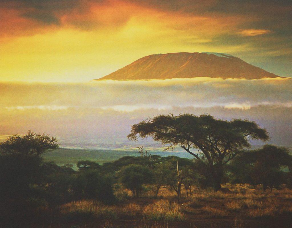 Comprar fotomural Kilimanjaro