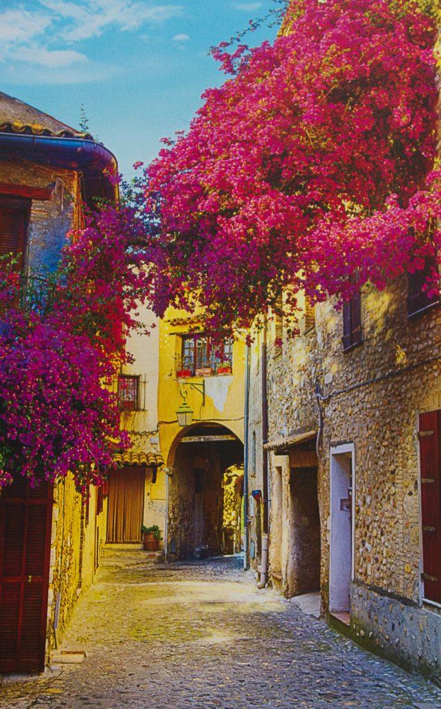 Comprar fotomural Toscana
